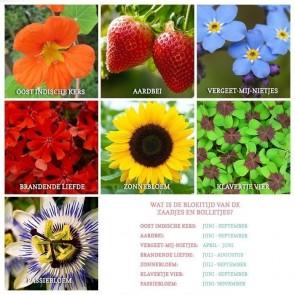 Bohemian Flowers Weckpotje Groen