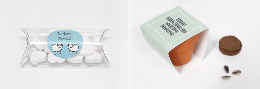 Kinderdagverblijf-bedankjes-Mini-Pillow-Box-Bloempotje