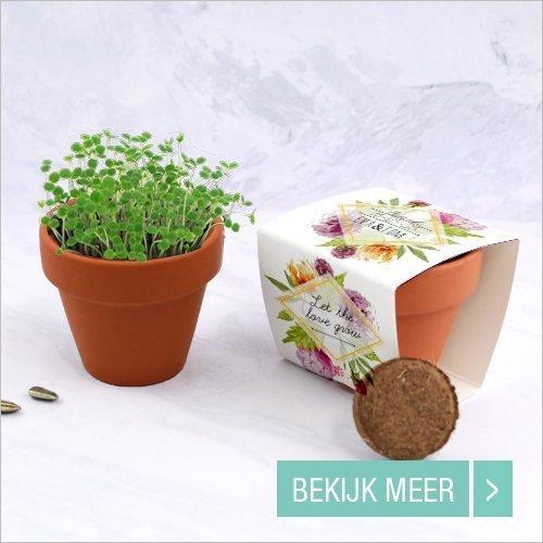 goedkope-huwelijk-bedankjes-bloempotje
