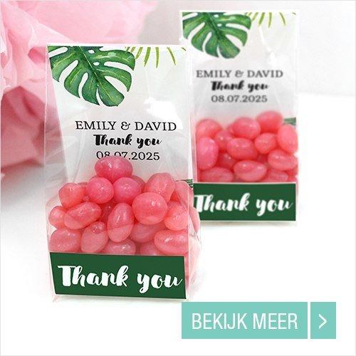 Goedkope-Huwelijk-bedankjes-Clear-Sweet-Bags