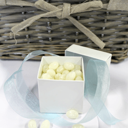 Wedding-box-wit-met-blauw-lint-en-vulling