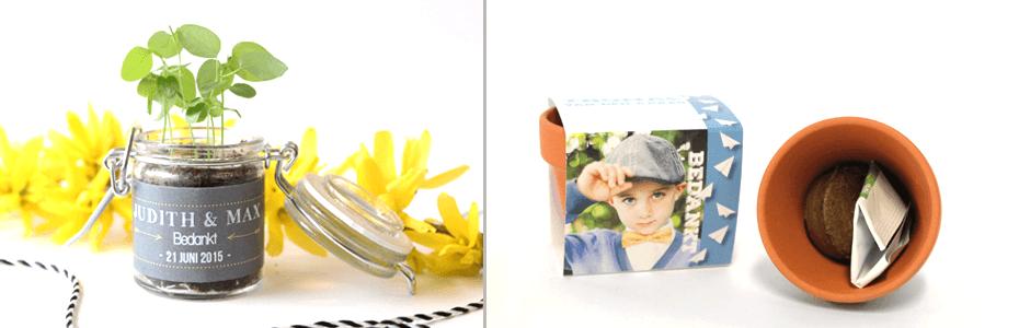 bedankjes-bloemzaadjes