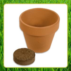 bloempotje-groene-bedankjes-potje-tablet