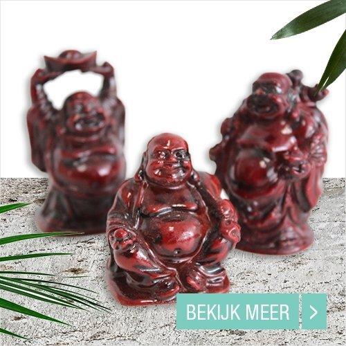 Sale bedankje Boeddha